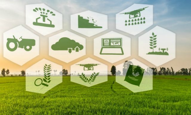 pertanian digital