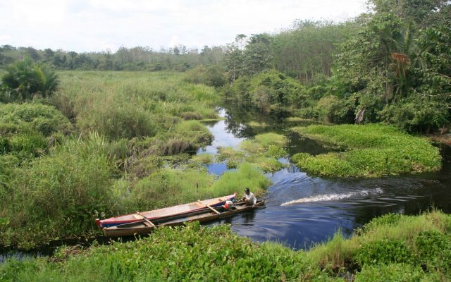 taman nasional rawa aopa watumohai