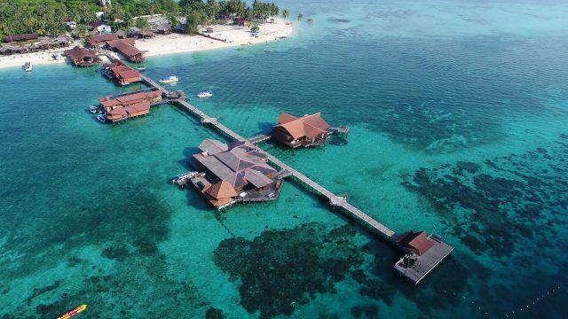 Biota Laut Derawan