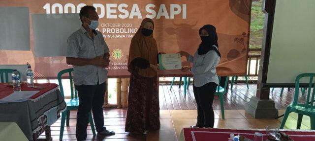 Program Seribu Desa Sapi