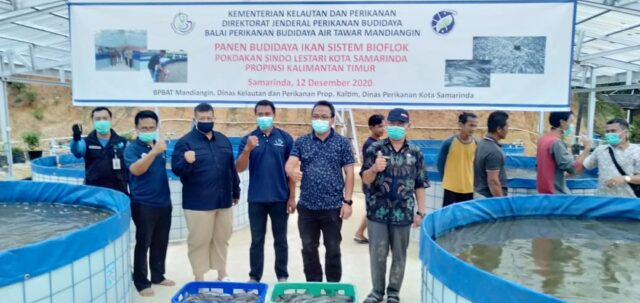 Budidaya Ikan Sistem Bioflok