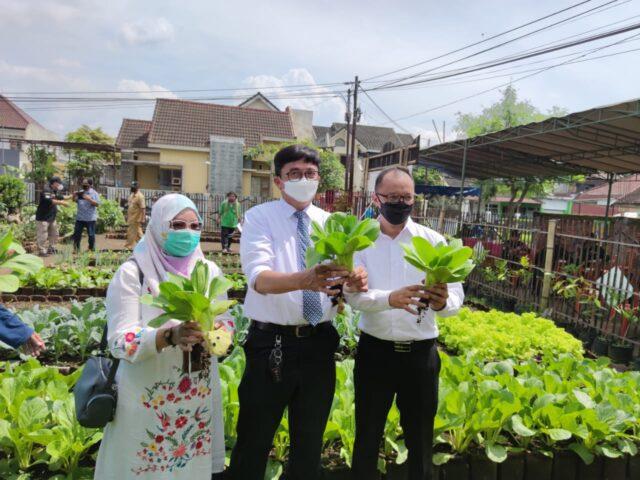 Urban Farming Lowok Waru Malang