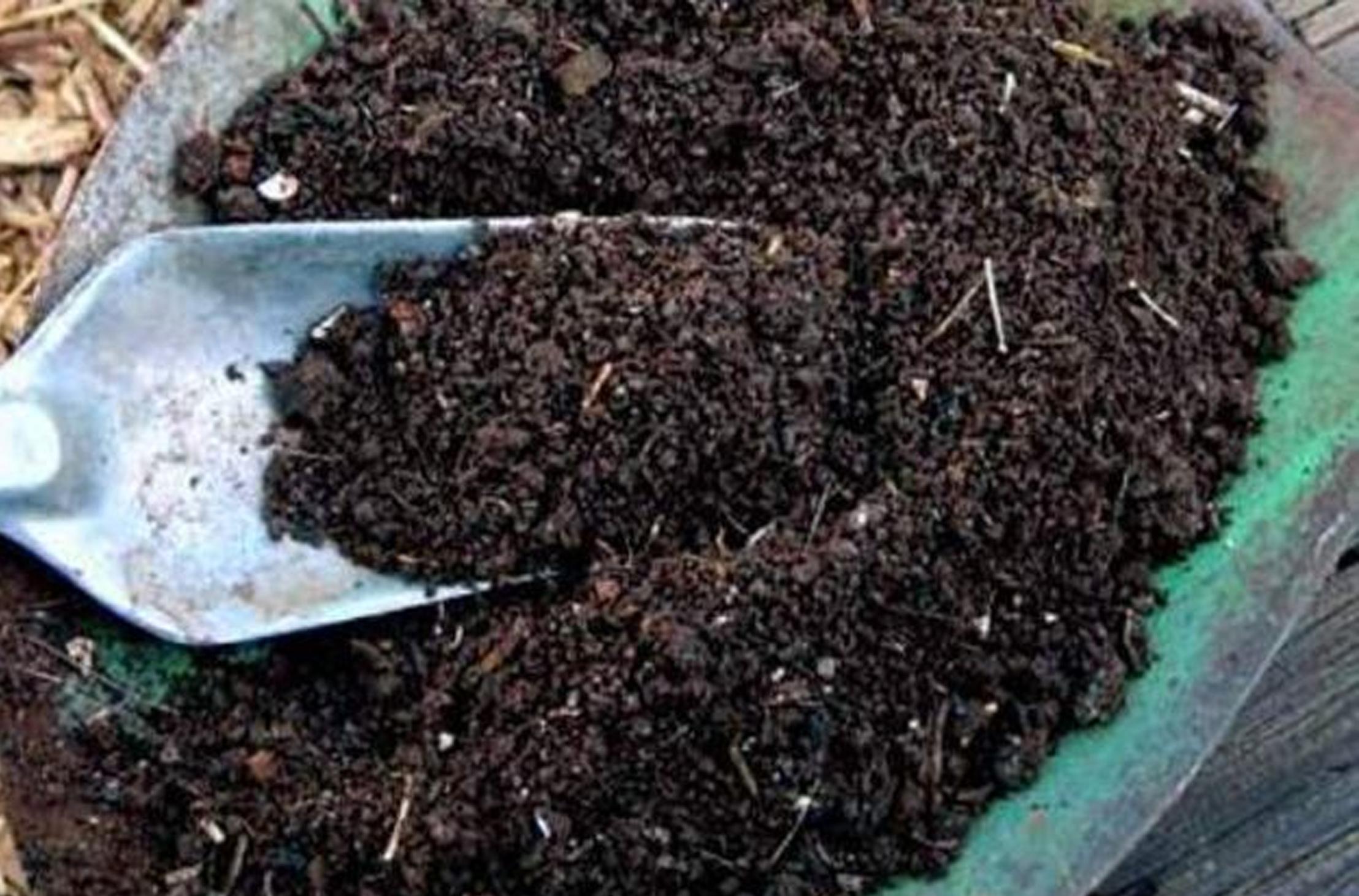 Pupuk Organik Jadi Dasar Strategi Peningkatan Pertanian