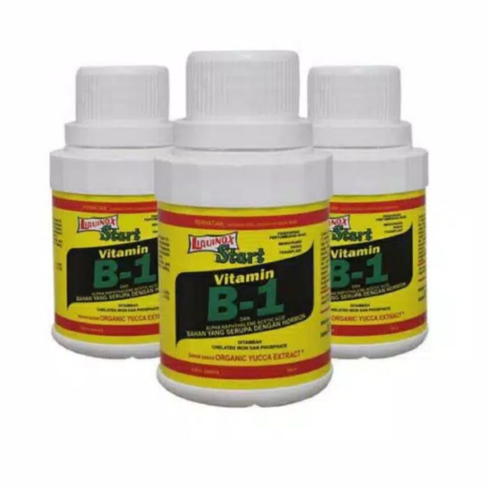 Vitamin B1 Liquinox Start